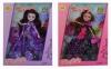 006-Кукла шарнирная в коробке 2 вида